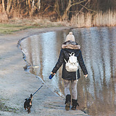 What Is A1C Levels - Type 1 Diabetes -walking dog