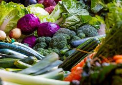 The Benefits to Growing Your Own Food - vegetables