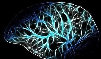 What is Diabetic Neuropathy - brain waves