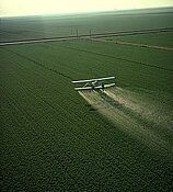 how are pesticides harmful