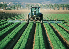 How are Pesticides Harmful - farmer spraying crop